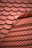 Red tiled roof Stock Image