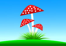 Red toadstools Royalty Free Stock Photos