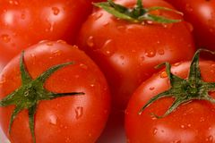 Red Tomato Stock Images