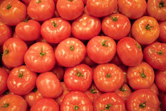 Red tomato background Stock Photography