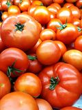 Red tomato background royalty free stock image