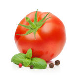 Red tomato and basil leaves spice Royalty Free Stock Photography
