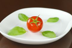 Red tomato with basil leaves on white oval plate. Single red tomato in water drops with basil leaves on white oval plate Royalty Free Stock Images