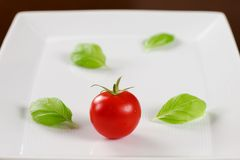Red tomato with basil leaves on white plate. Single red tomato in water drops with basil leaves on white plate Stock Photography