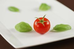 Red tomato with basil leaves on white plate. Single red tomato in water drops with basil leaves on white plate, positioned diagonally Stock Photos