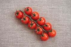 Red tomato on beige background. Cherry tomato on a green branch is on the burlap. The view from the top royalty free stock photography
