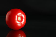 Red Tomato On Black Royalty Free Stock Photo