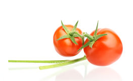 Red tomato with a branch.  on white background Stock Photography