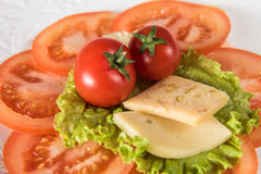 Red tomato cheese and green salad Stock Images