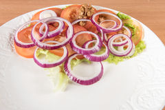 Red tomato, cheese, onion and green salad Royalty Free Stock Images