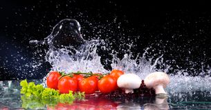 Red tomato cherry, mushrooms and green fresh salad with water drop splash. With copy space royalty free stock photography