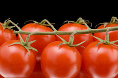 Red tomato close up Royalty Free Stock Photos