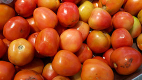 Red tomato. For cooking food background red morning Royalty Free Stock Photos