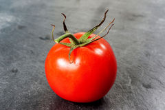 Red tomato on dark background. Stock Photography