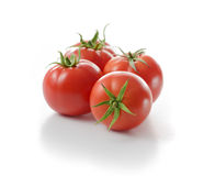 Red Tomato royalty free stock photography