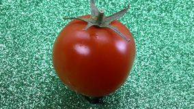Red tomato on a green background stock video footage