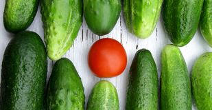 Red tomato among green cucumbers saying standing out from the crowd Royalty Free Stock Photography