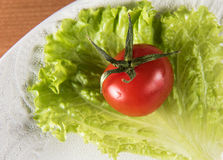Red tomato and green salad Stock Images