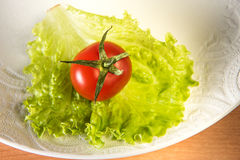 Red tomato and green salad Stock Image