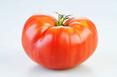 Red Tomato. Isolated on white Royalty Free Stock Images