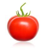 Red tomato. Stock Photo