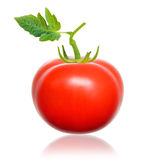 Red tomato. Royalty Free Stock Photography