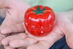Red tomato kitchen timer set to 0, held by both hands, with open palms stock image