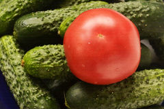 Red tomato lying on green cucumbers. Red tomato is on green cucumbers, still life Royalty Free Stock Photo