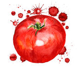 Red tomato with paint blots Royalty Free Stock Image