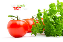 Red tomato with parsley Stock Images