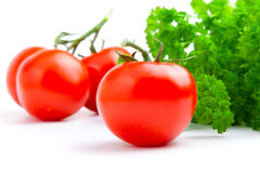 Red tomato with parsley Royalty Free Stock Image