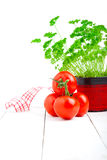 Red tomato with parsley Royalty Free Stock Photos