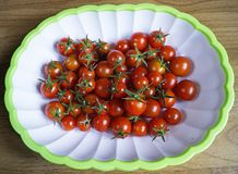 Red tomato in plate Stock Photography