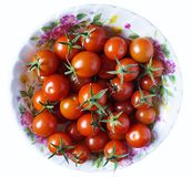 Red tomato in plate. Red tomatoes on plate insulated on white background Royalty Free Stock Photo