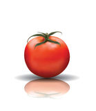 Red Tomato with reflection Royalty Free Stock Images