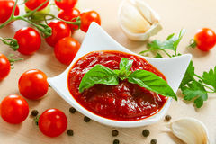 Red tomato sauce Royalty Free Stock Photo