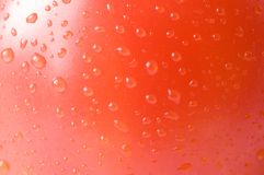 Red tomato skin Royalty Free Stock Image