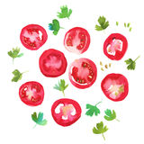 Red tomato slices with parsley Royalty Free Stock Photography
