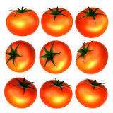 Red tomato with variety. Foods and Dishes Series. Royalty Free Stock Photos