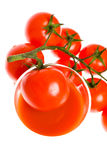 Red tomato vegetable with cut isolated on white background Royalty Free Stock Photos