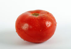Red tomato vegetable on white background Royalty Free Stock Photo