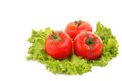 Red tomato  vegetables Royalty Free Stock Photos
