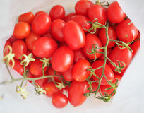 Red Tomato vegetables. Vegetarian food Stock Images