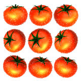 Red tomato with water droplets from variety. Foods and Dishes Se Stock Images