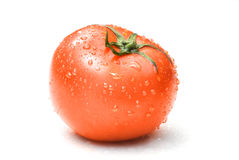Red tomato with water drops Stock Photography