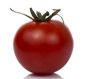 Red Tomato in White background Royalty Free Stock Photography