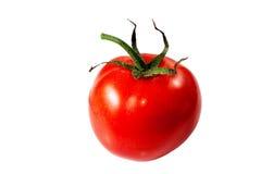 Red tomato on white background. Stock Photo