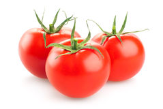 Red tomato  on white background Royalty Free Stock Photo