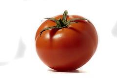 Red tomatoe Stock Image