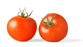 Red tomatoes. Two red tomatoes over white background royalty free stock photography